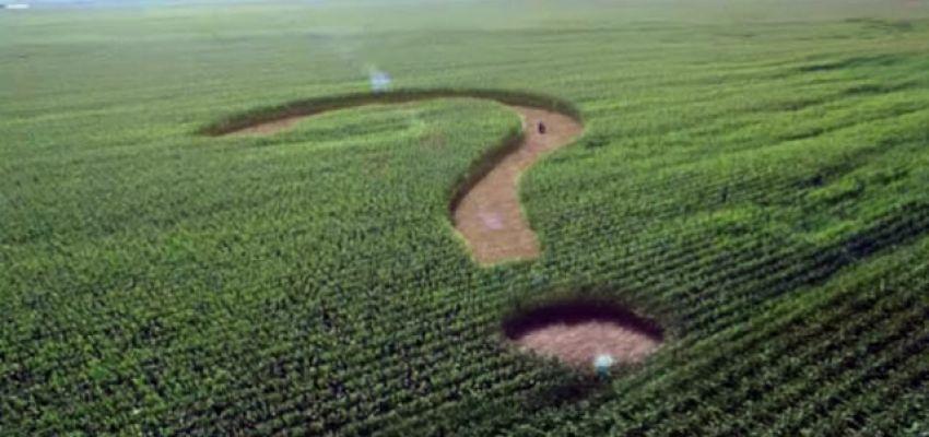 Які кроки необхідно зробити с.г. товаровиробнику сьогодні, щоб підготуватися до обігу землі с.г. призначення?