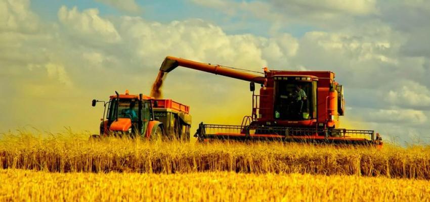 Мінімальна база оподаткування ПДВ при реалізації сільгосппродукції