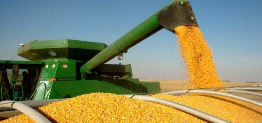 Норми природних втрат зерна
