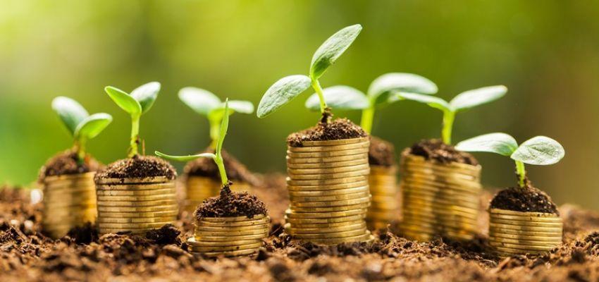 Сплата земельного податку платниками ЄП 4-ї групи